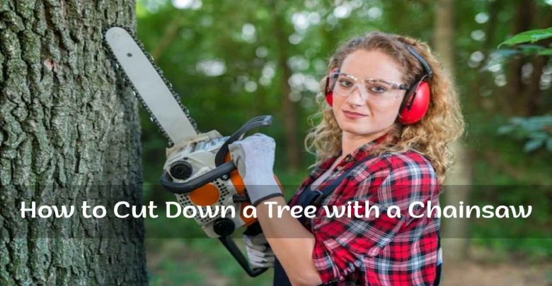How to Cut Down a Tree with Chainsaw